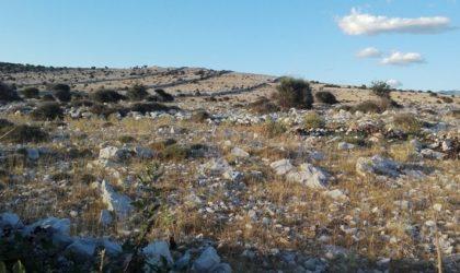 OTOK PAG: Prodaje se 90.000 m2 poljoprivrednog zemljišta između mjesta Jakišnice i Luna ► 8 €/m2