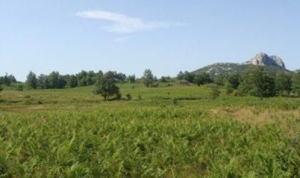 LIKA/SVETI ROK Poljoprivredno zemljište 210.000 m2 s izvorom vode ► 170.000 €
